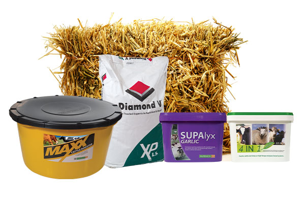 Rumenco | Ruminant livestock feed supplements blocks, licks