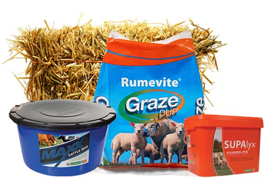 Rumenco are a leading national and international supplier of high quality ruminant feed solutions. Rumevite Graze DUP, Maxx Cattle Mag, Supalyx Sheep